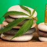 IV Fórum Cannabis Medicinal - Dra. Eliane Nunes, diretora da SBEC