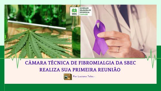 Copia de CAMARA TECNICA DE FIBROMIALGIA DA SBEC REALIZA SUA PRIMEIRA REUNIAO
